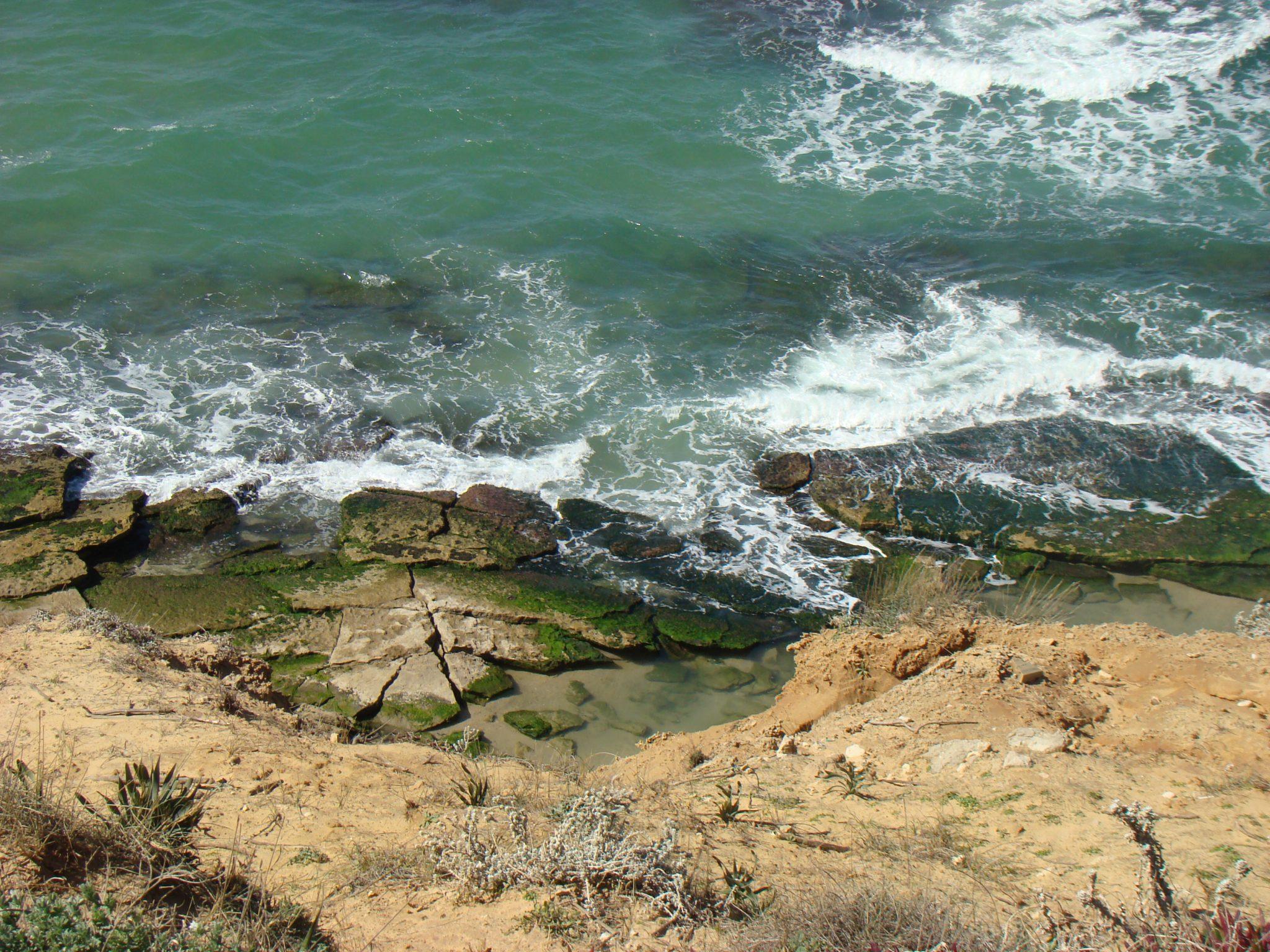 טבלות גידוד ימי, גן לאומי פארק חוף השרון