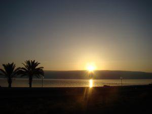 עמק הירדן, חרמון, אודם, רקפת יוונית, אירוס, עמק הבכא, איילים 047