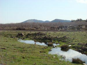 מסיל מים בצפון רמת הגולן