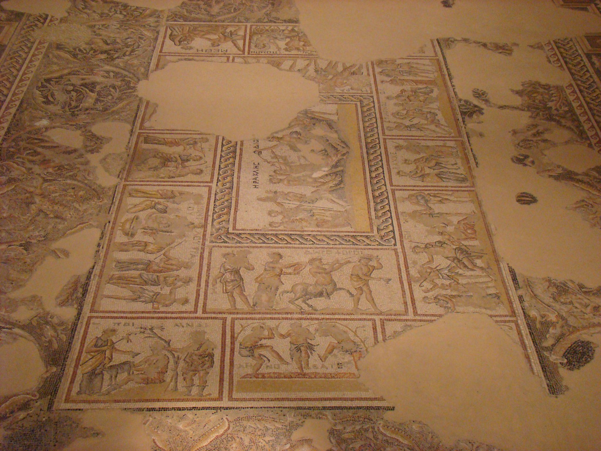 """פסיפס בית דיוניסוס, בגן לאומי ציפורי (צילום: ד""""ר ענת אביטל)"""