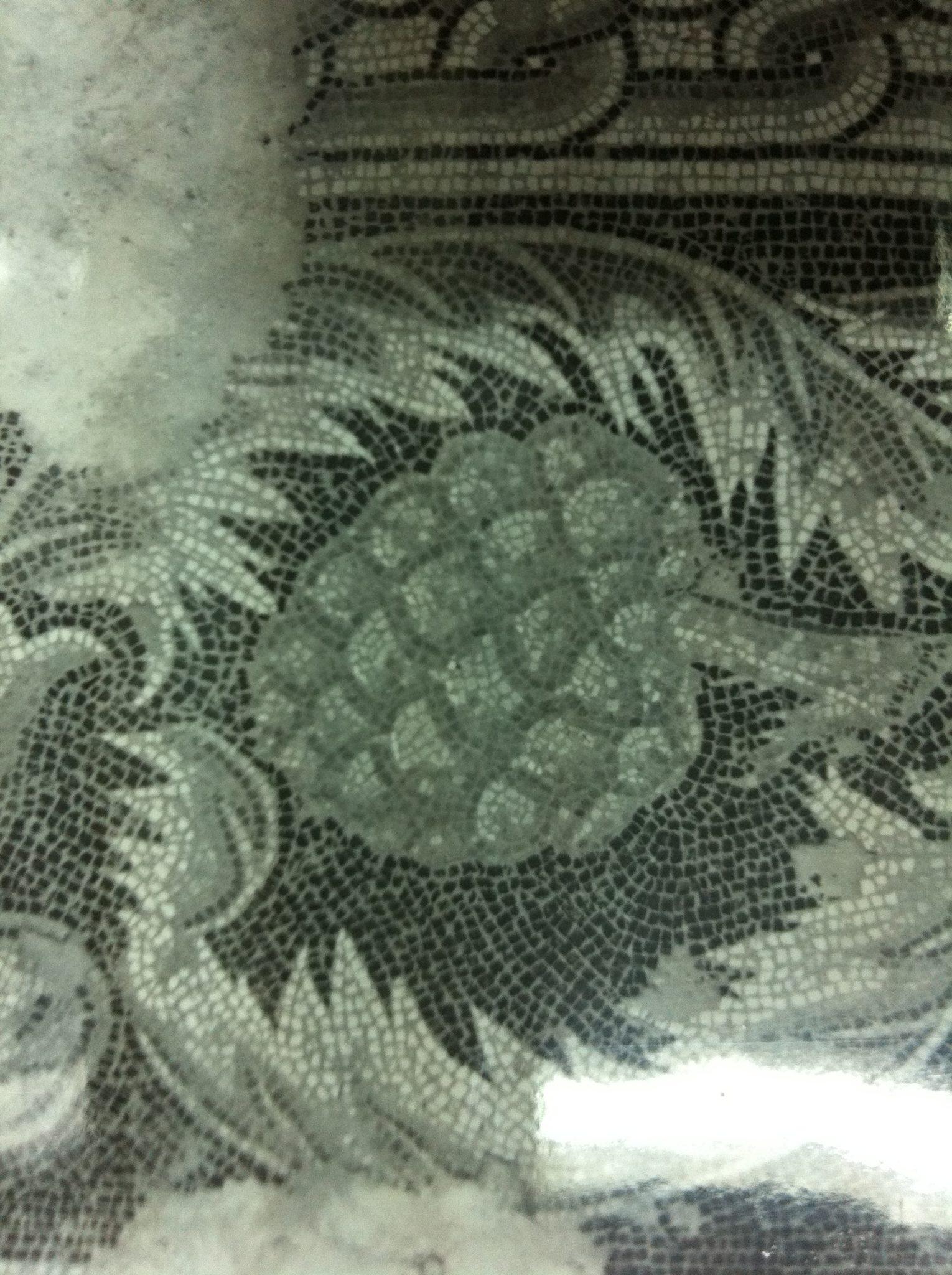 אצטרובל האורן הצנובר, פסיפס כנסיית המולד בבית לחם (ארכיון מנדטורי של רשות העתיקות)