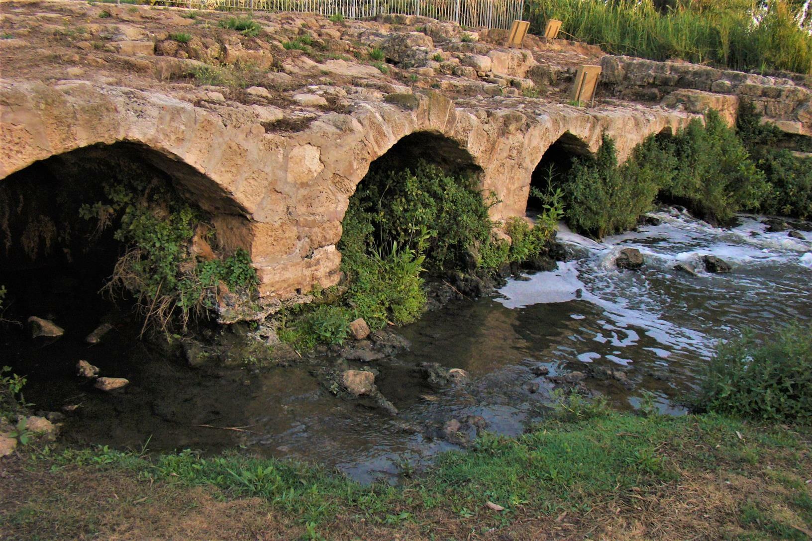 """קשתות שבע טחנות על נהר הירקון בגני יהושע, צילום: ד""""ר ענת אביטל"""