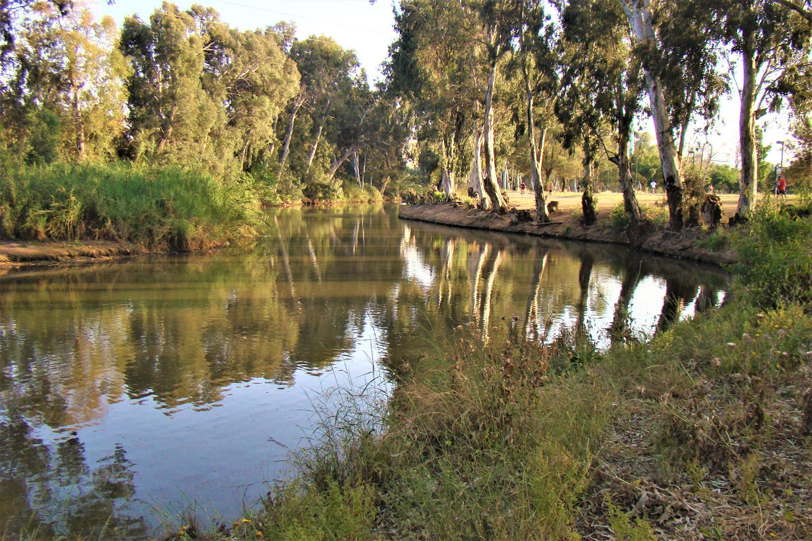"""ברכות שבע טחנות על נהר הירקון בגני יהושע, צילום: ד""""ר ענת אביטל"""