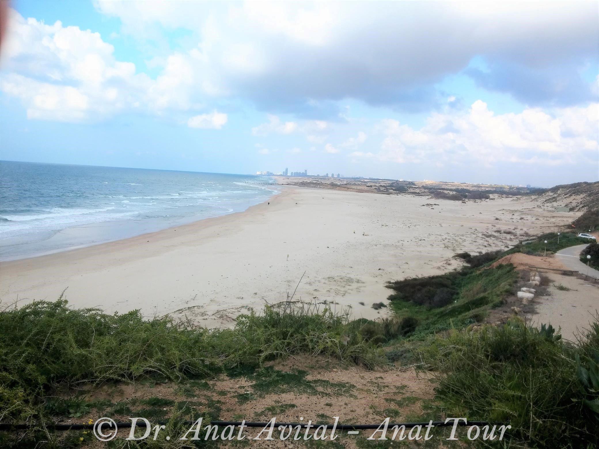 """דיונות שפך נחל שורק-חוף פלמחים (ד""""ר ענת אביטל)"""