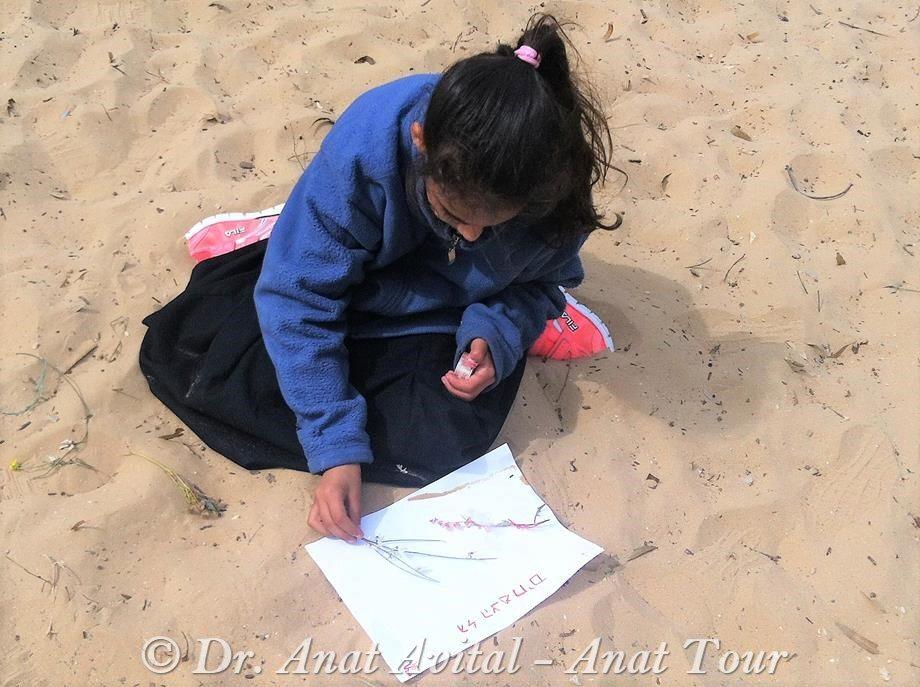 """פעילות ילדים במסלול חולות בשפך נחל שורק חוף פלמחים (ד""""ר ענת אביטל)"""