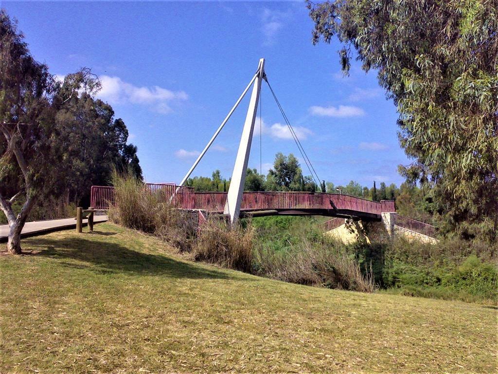 """גשר על הירקון, אצטדיון רמת-גן, צילום: ד""""ר ענת אביטל"""