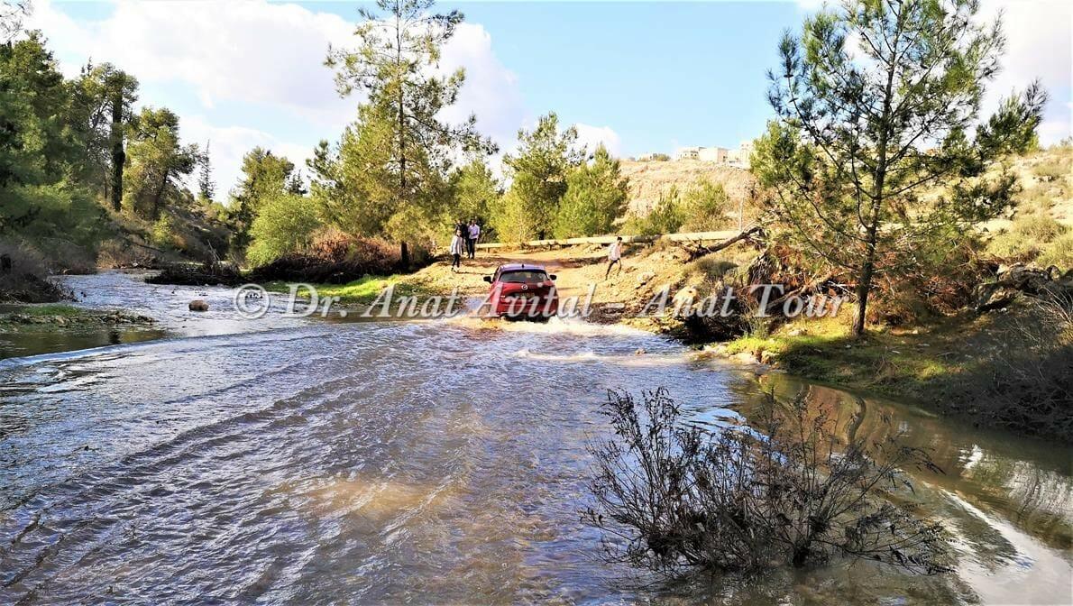 """נחל מודיעים (שילת-חשמונאים) זורם מים בחורף, ינואר 2020, צילום: ד""""ר ענת אביטל"""