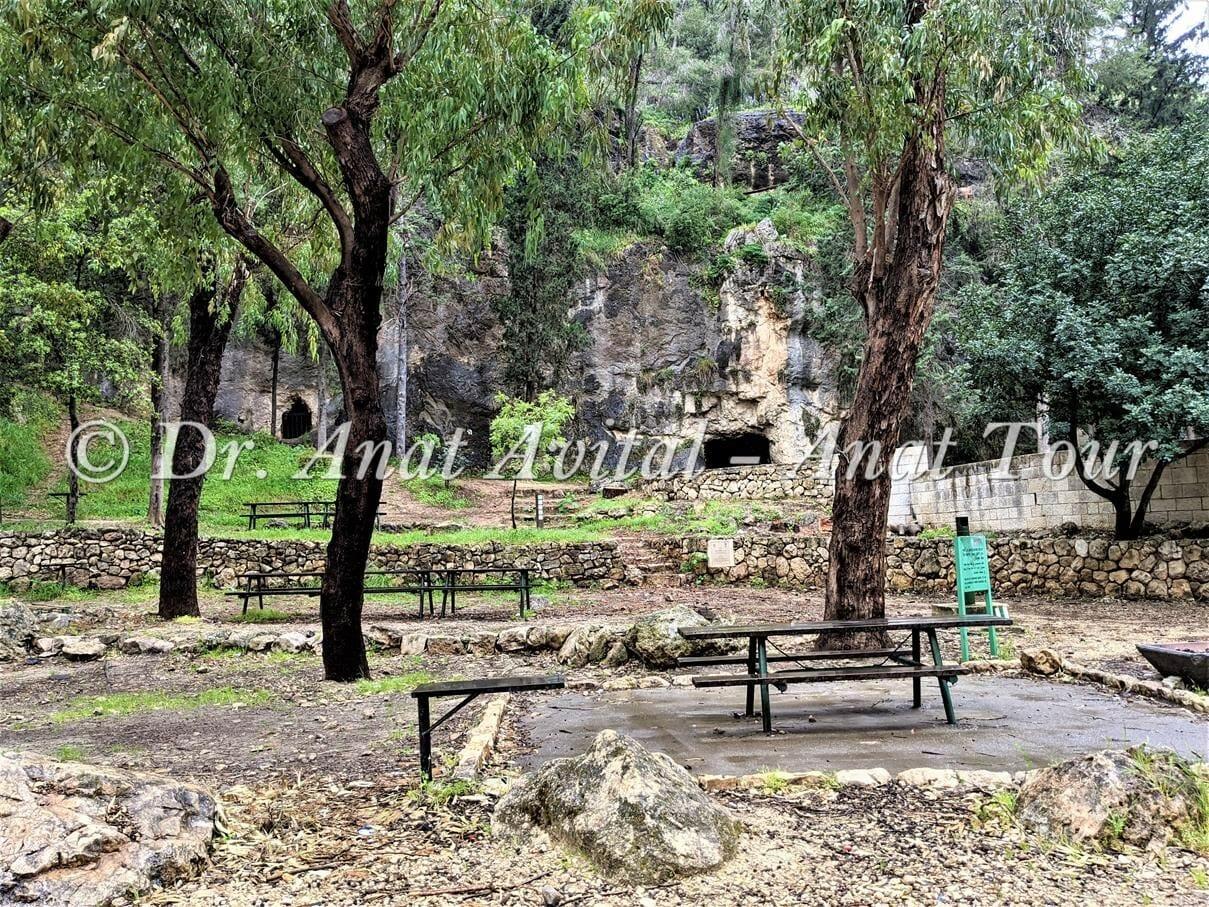 """מערת בני ברית, יער הקדושים על ערוץ נחל כסלון, צילום: ד""""ר ענת אביטל"""