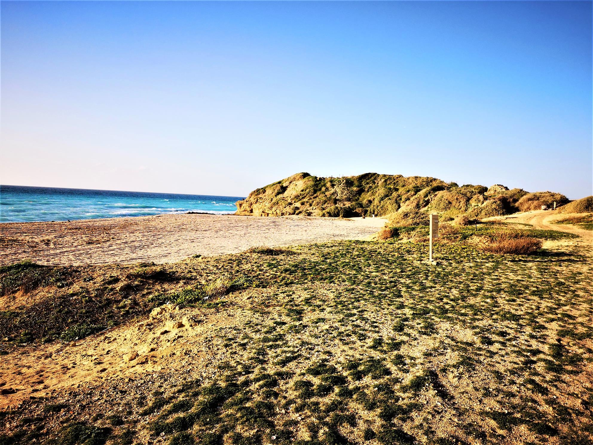 """שמורת טבע גן לאומי חוף פלמחים, יבנה ים (ד""""ר ענת אביטל)"""