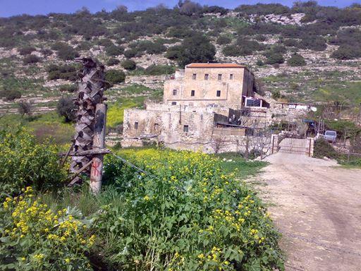 """טחנת הנזירים בנחל ציפורי (צילום: ד""""ר ענת אביטל)"""