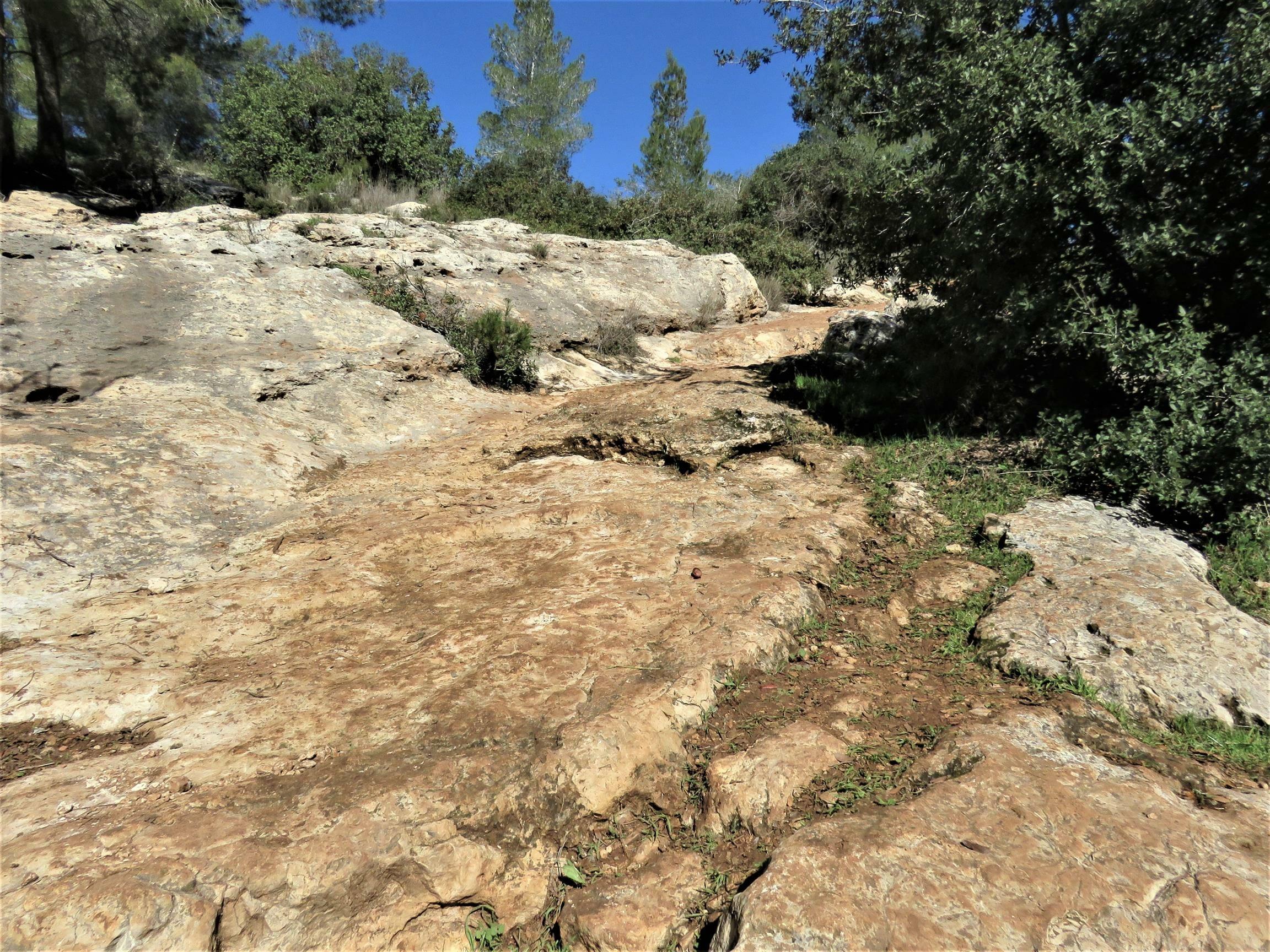 """מדרגות רומיות ליד בור המים בדרך הקיסר, שביל ישראל, צילום: ד""""ר ענת אביטל"""