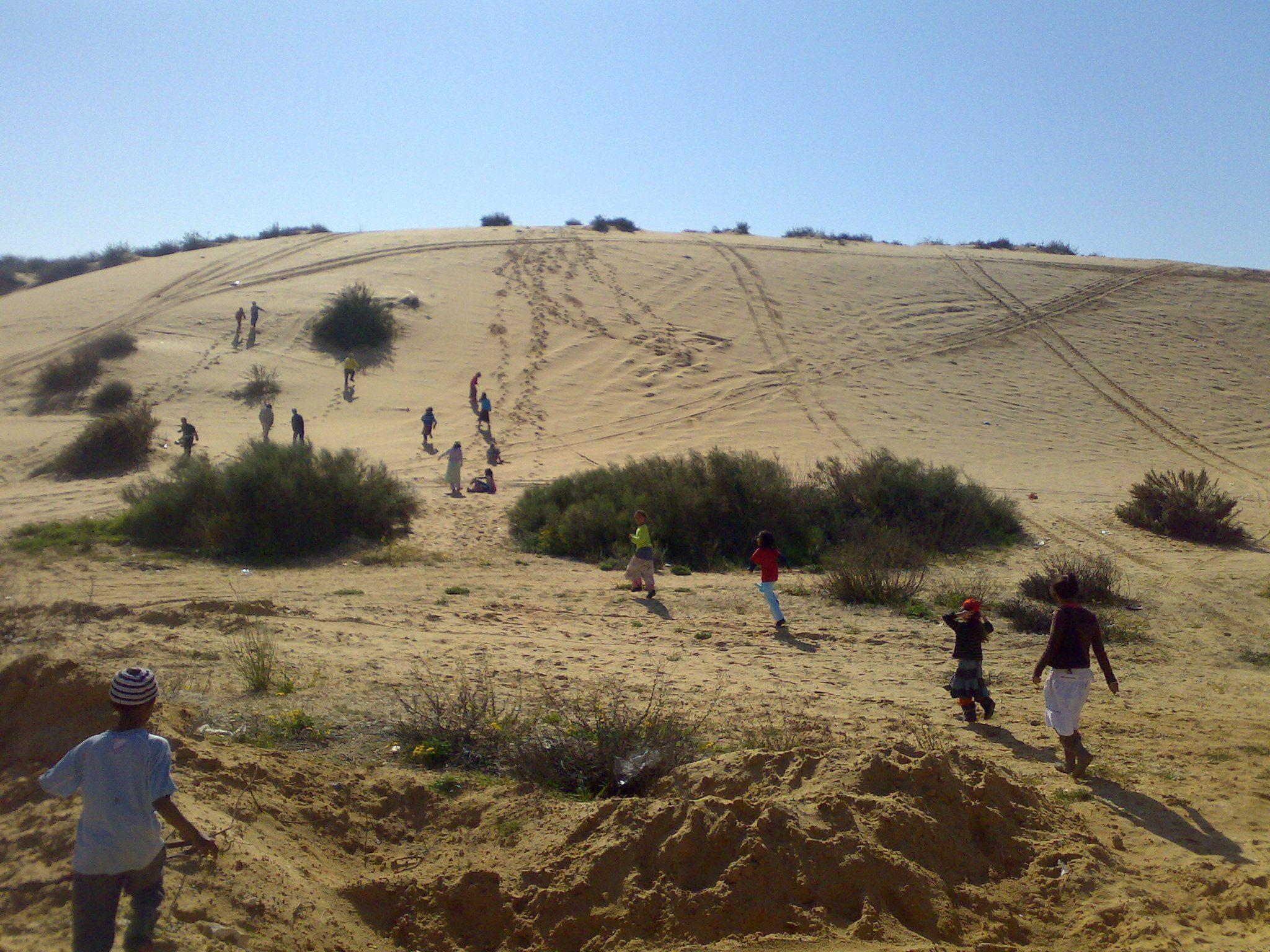 """דיונה הגדולה באשדוד (צילום: ד""""ר ענת אביטל)"""