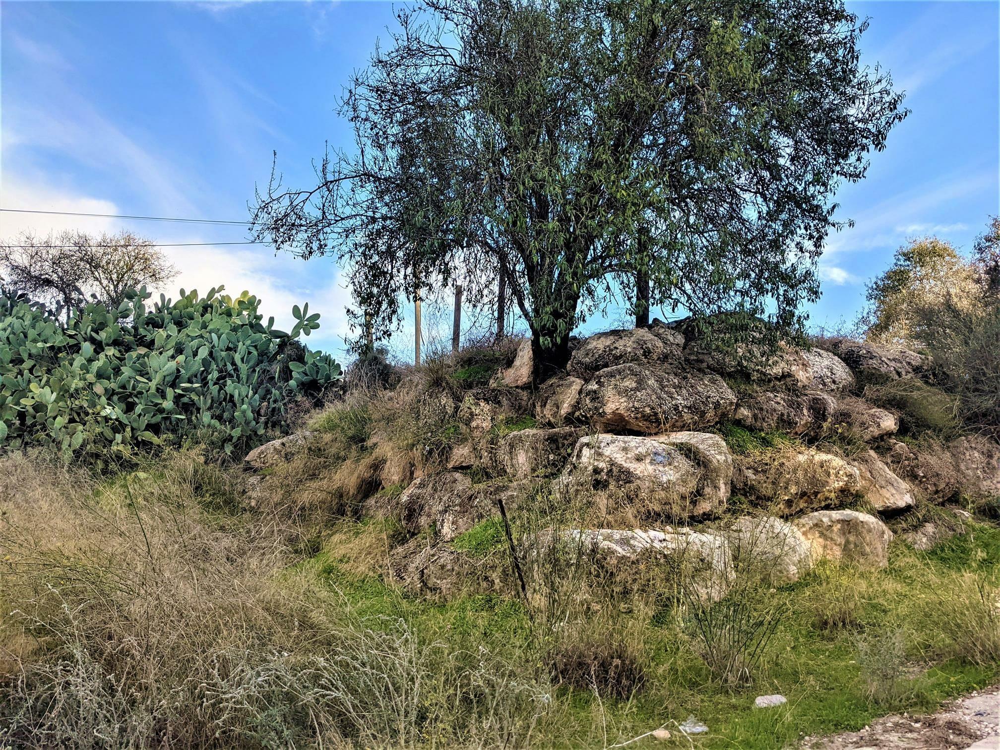 """חומות מתחם מבצר צלבני לטרון, לה-טורון דה שבלייה, צילום: ד""""ר ענת אביטל"""