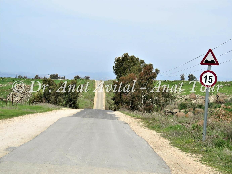 """ציר הנפט בדרך אל נחל עורבים בצפון הגולן, צילום: ד""""ר ענת אביטל"""