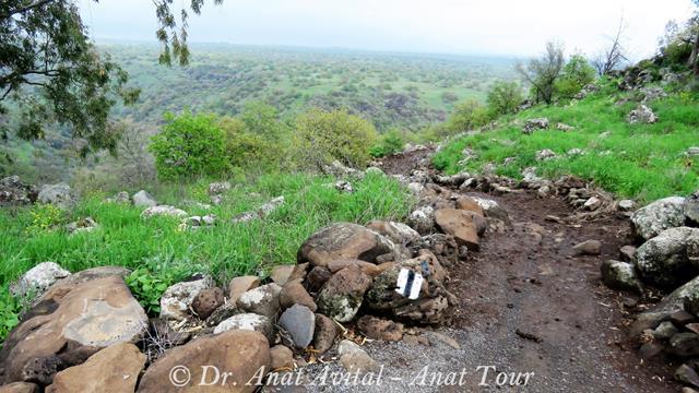 """שביל התצפיות ברכת המשושים, שמורת יהודייה, צילום: ד""""ר ענת אביטל"""