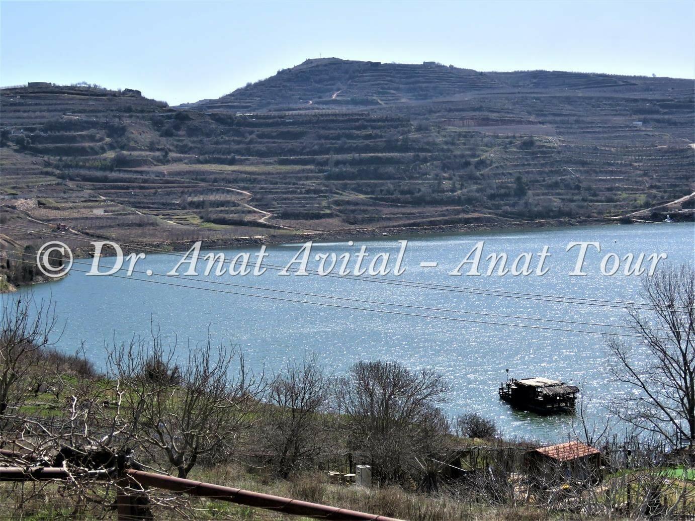 """ברכת רם בצפון הגולן, צילום: ד""""ר ענת אביטל"""