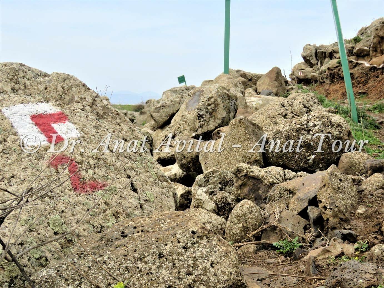 """סימון שבילים אדום בנחל עורבים בצפון הגולן, צילום: ד""""ר ענת אביטל"""