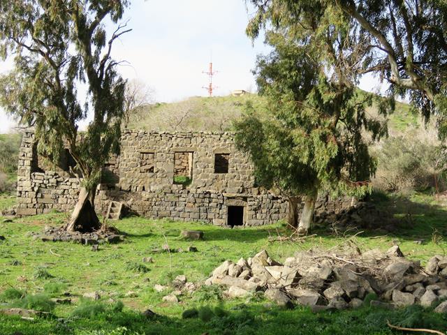 """חורבת פארג' מזרח-מרכז הגולן (צילום: ד""""ר ענת אביטל)"""