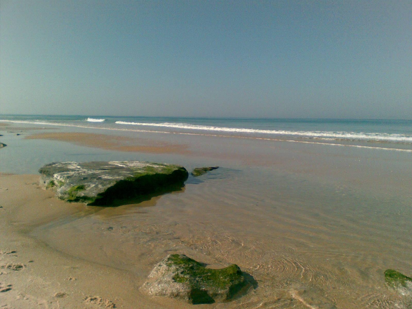 חוף ניצנים (ויקיפדיה, לירז שגריר)