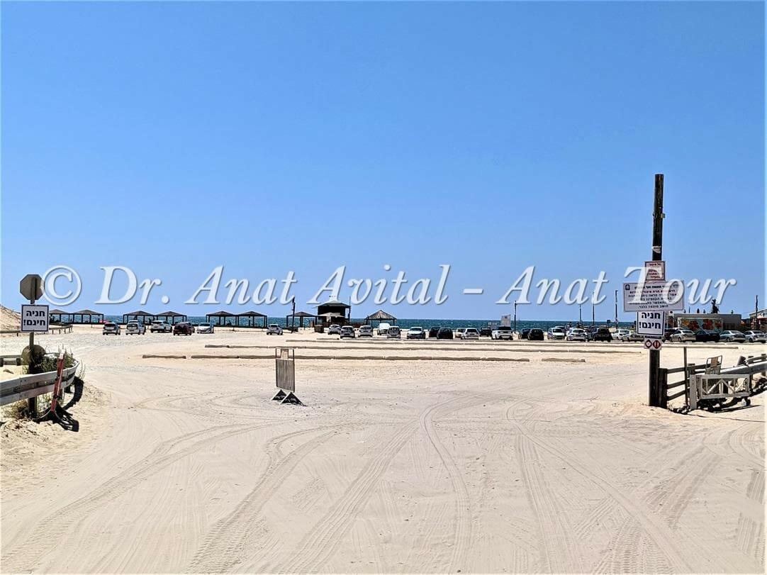 """חוף רחצה ניצנים, צילום: דר"""" ענת אביטל"""