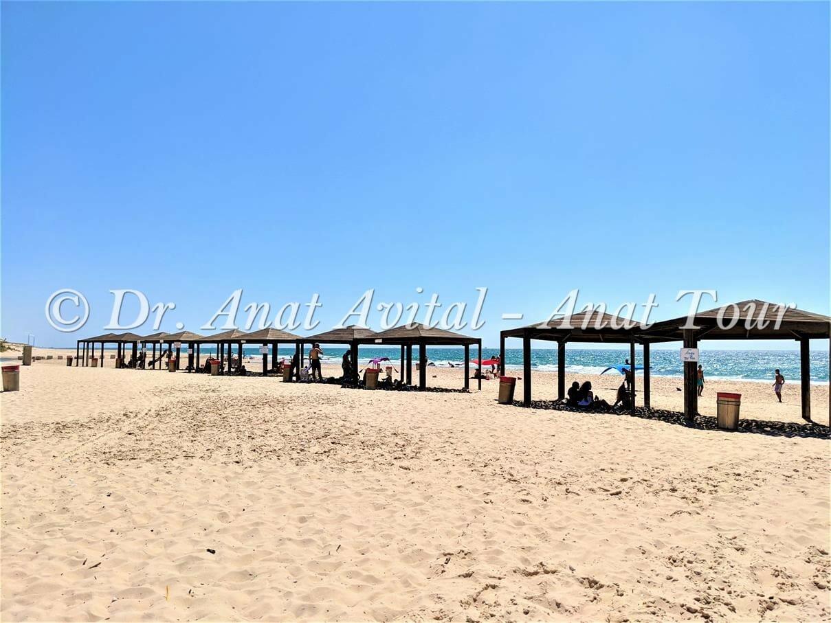 """חוף רחצה ניצנים, צילום: ד""""ר ענת אביטל"""