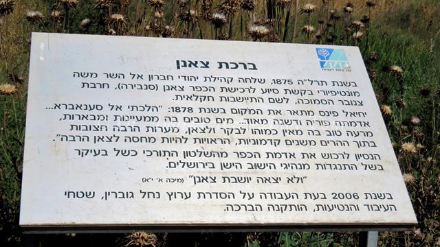 """ברכת צאנן, נחל  גוברין ליד צומת בית גוברין (צילום: ד""""ר ענת אביטל)"""