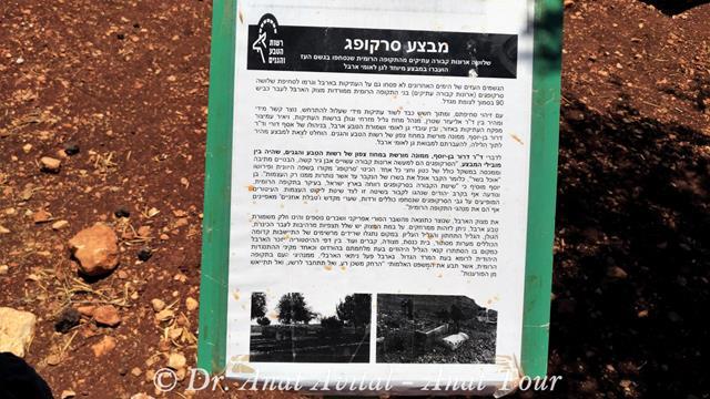 """גן לאומי ארבל, הצלת סרקופאגים (צילום: ד""""ר ענת אביטל)"""