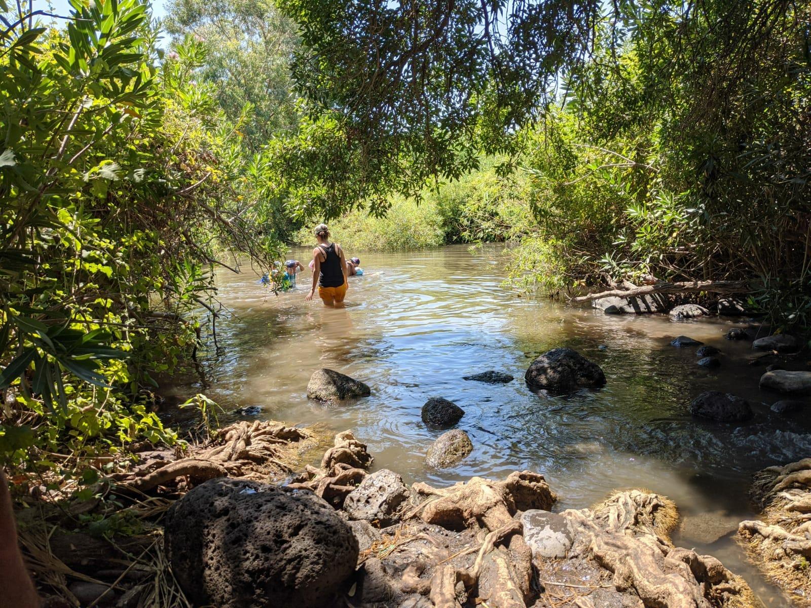 """הזאכי: טיול מים משפחתי בערוץ הזאכי בשמורת המג'רסה, צילום: ד""""ר ענת אביטל"""