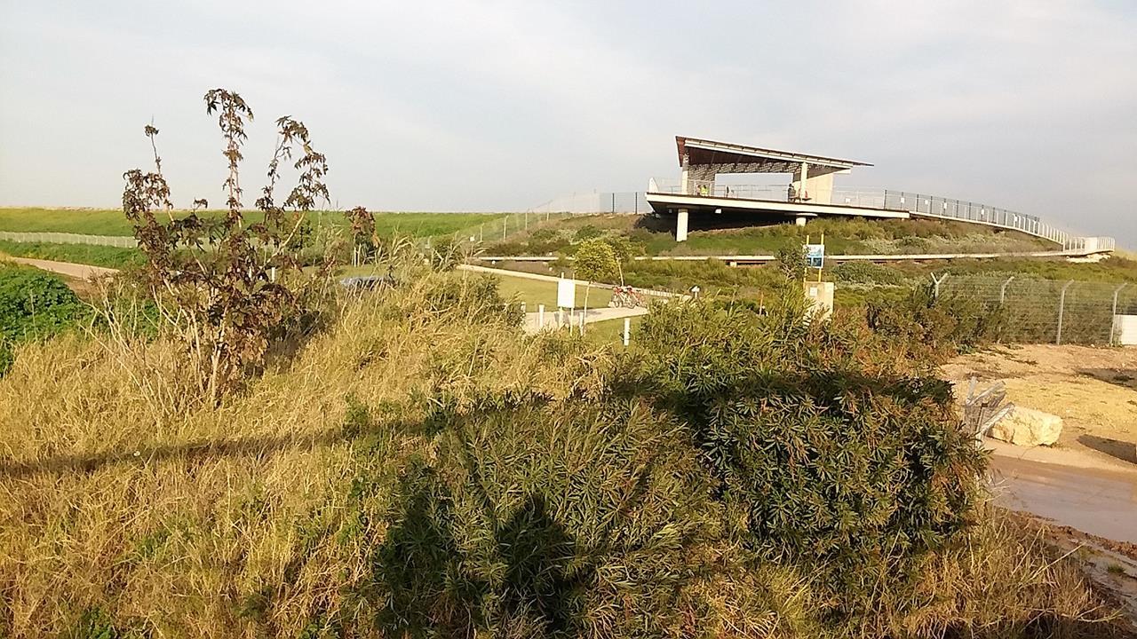 """מאגר משמר השרון- מרכז צפרות ותצפית, מצפור אגמי עמק חפר- נחל אלכסנדר (ד""""ר ענת אביטל)"""