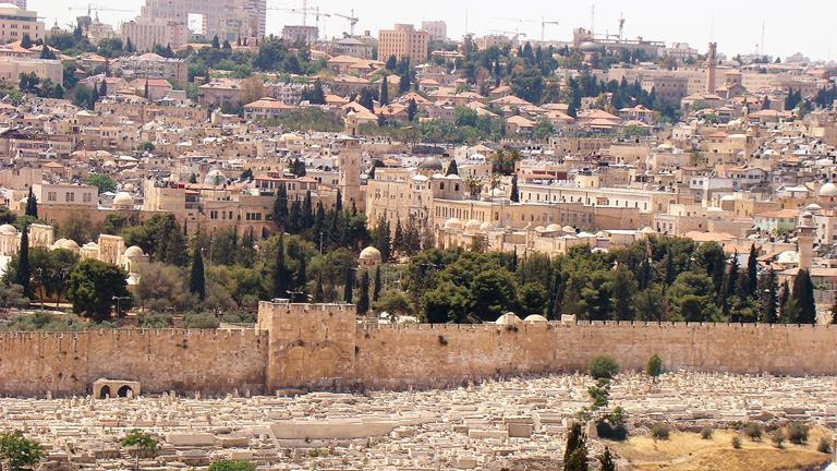 """תצפית הר הזיתים, ירושלים (ד""""ר ענת אביטל)"""