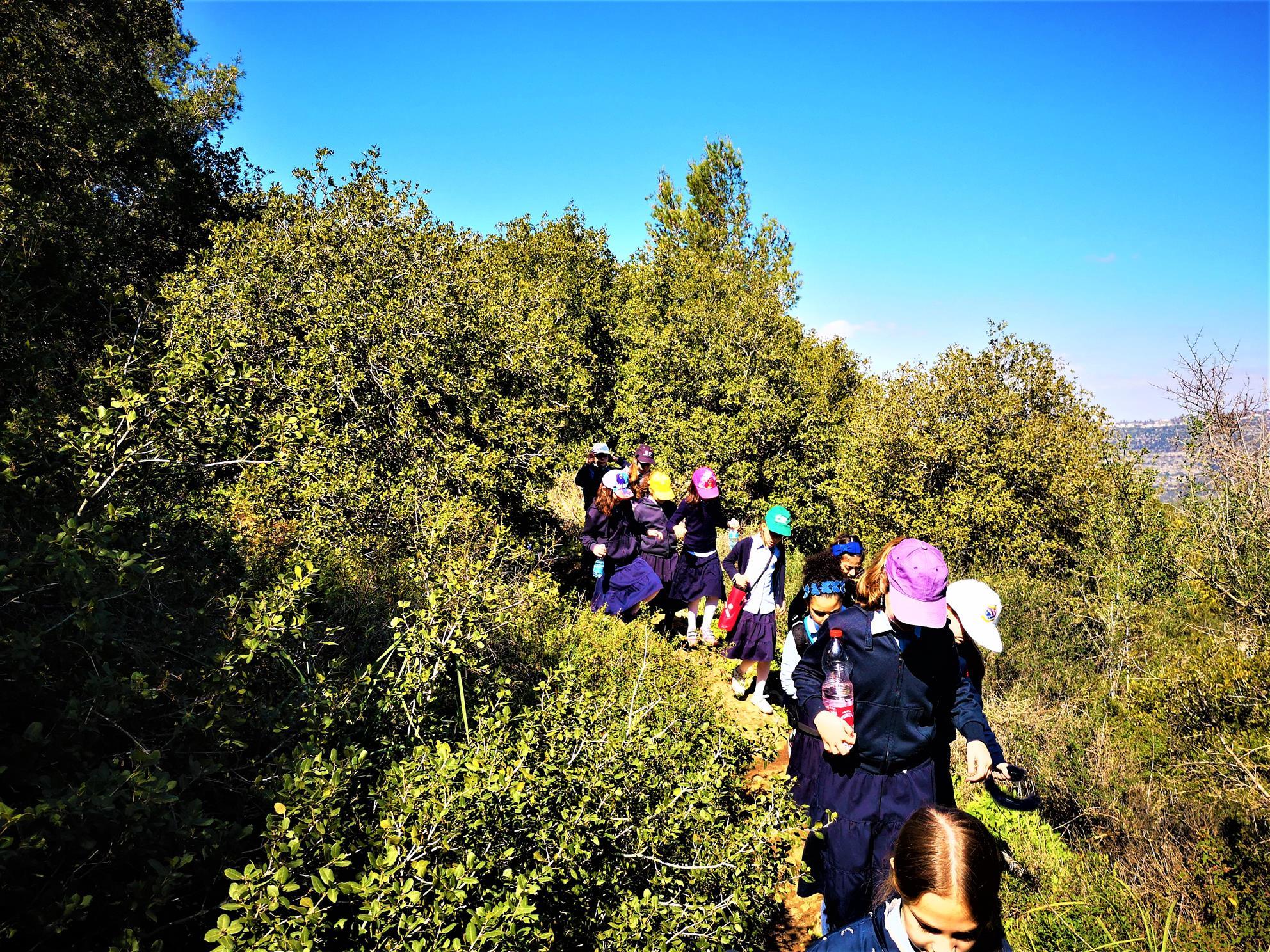 """טיול בית ספר בנות חרדיות לשמירת הטבע, שביל שוסטר, נחל קטלב עליון (ד""""ר ענת אביטל)"""