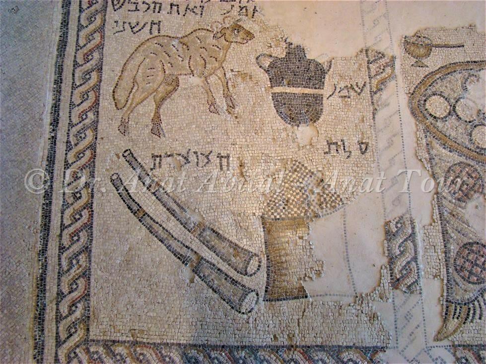 """פנל המקדש והקורבנות, פסיפס בית הכנסת העתיק של ציפורי, צילום: ד""""ר ענת אביטל"""