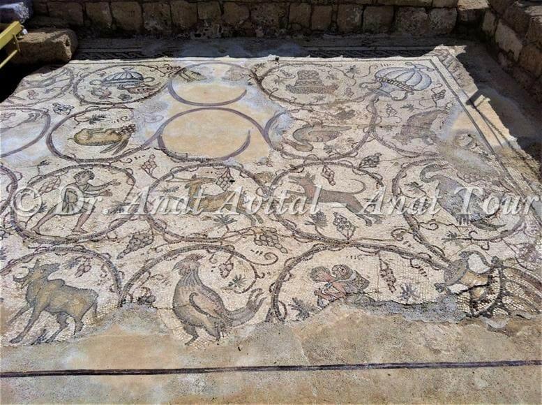 """מראה כללי פסיפס מקיסריה העתיקה מערבית לקמרונות הנמל, צילום: ד""""ר ענת אביטל"""