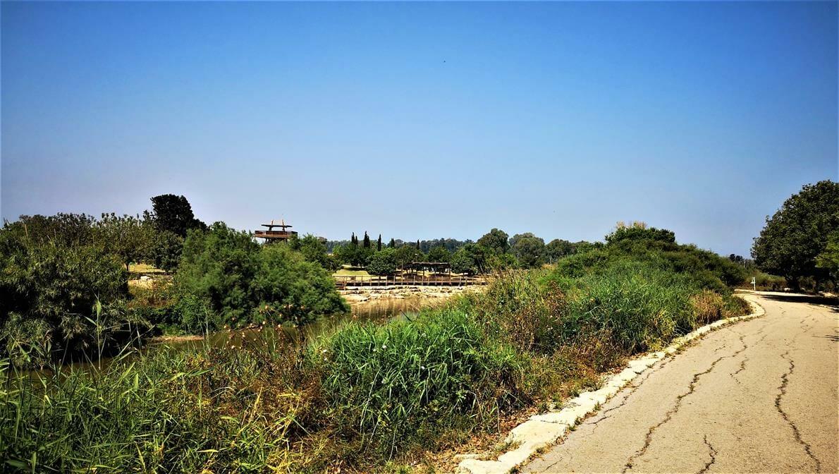 """נחל אלכסנדר טיילת פארק גשר הצבים, שביל ישראל, צילום: ד""""ר ענת אביטל"""