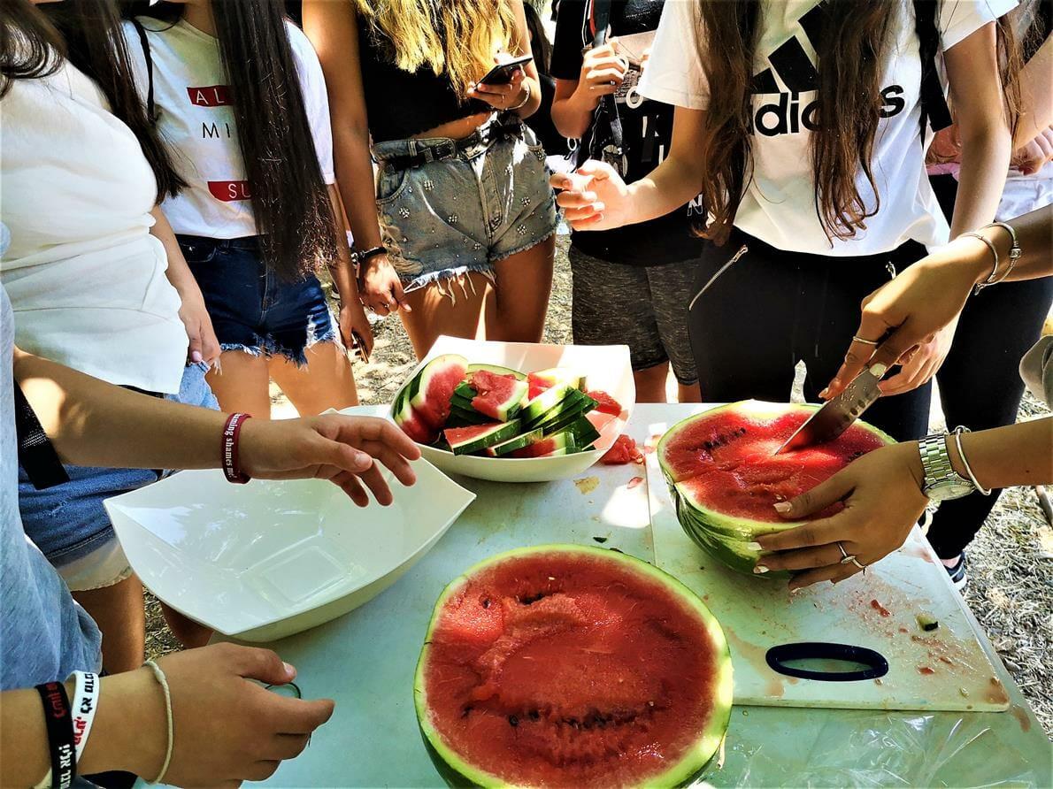 קינוח אבטיח אדום בבישולי שקשוקה וסלטים פעילות וסדנת בישולי שדה עם תלמידים