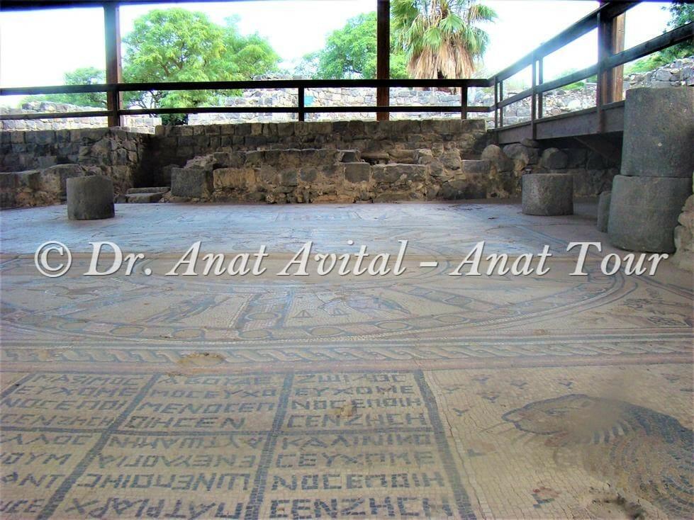 """פסיפס בית כנסת חמת טבריה, צילום: ד""""ר ענת אביטל"""