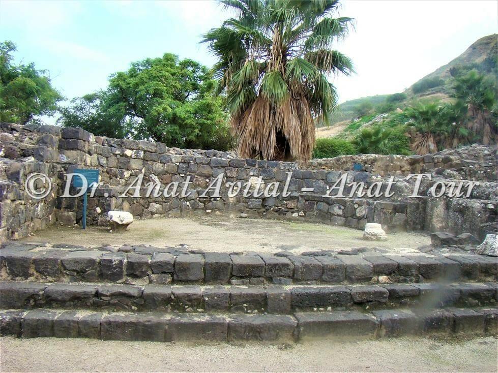 """גן לאומי בית כנסת חמת טבריה, צילום: ד""""ר ענת אביטל"""