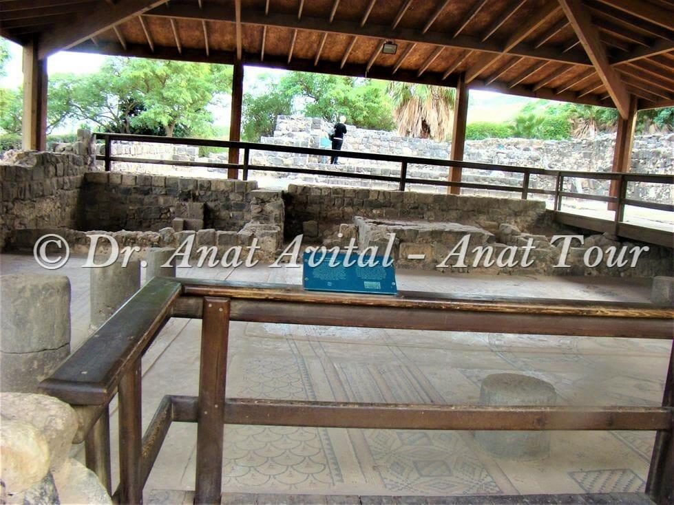 """פסיפס גן לאומי בית כנסת חמת טבריה, צילום: ד""""ר ענת אביטל"""