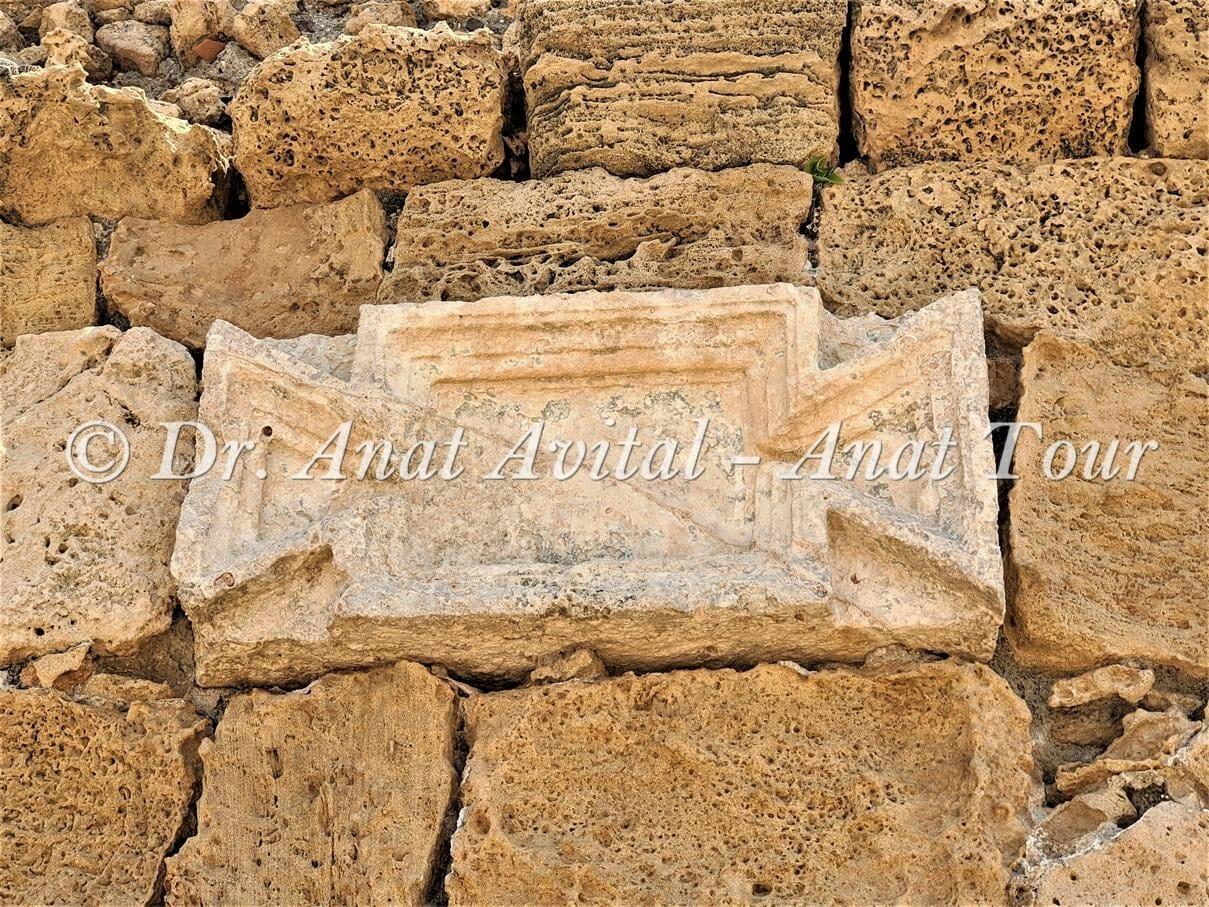 """טבלת אזניים באמה הרומית הגבוהה בחוף אקוודוקט קיסריה, צילום: ד""""ר ענת אביטל"""