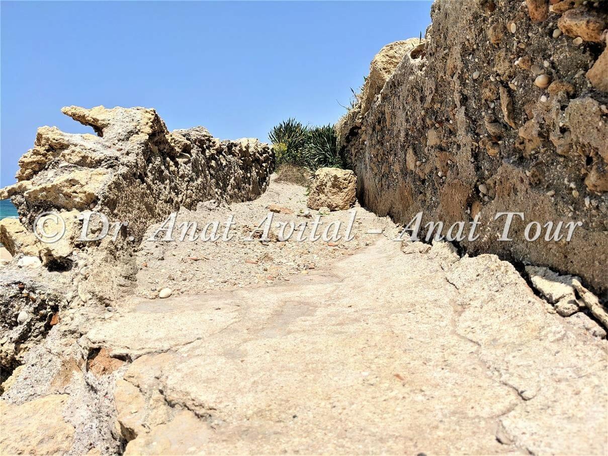 """האמה הרומית הגבוהה בחוף אקוודוקט קיסריה, צילום: ד""""ר ענת אביטל"""