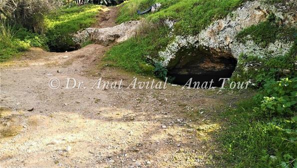 """תל חדיד, צילום: ד""""ר ענת אביטל"""