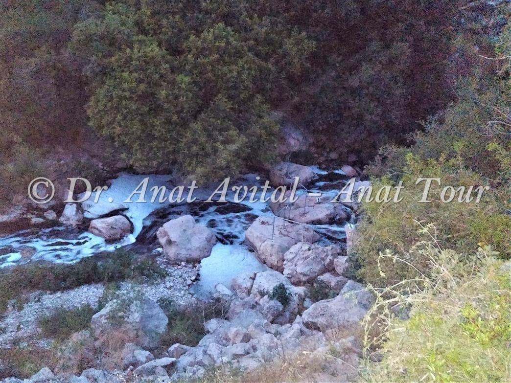 """מעקה בטיחות למעבר רגלי מעל מי נחל שורק, סימון כחול, צילום: ד""""ר ענת אביטל"""