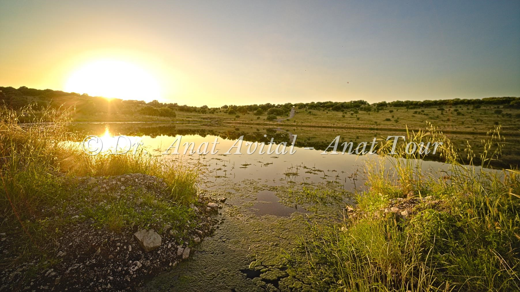 """מאגר פירחה-גלעד-רז, רמות מנשה, צילום: ד""""ר ענת אביטל"""