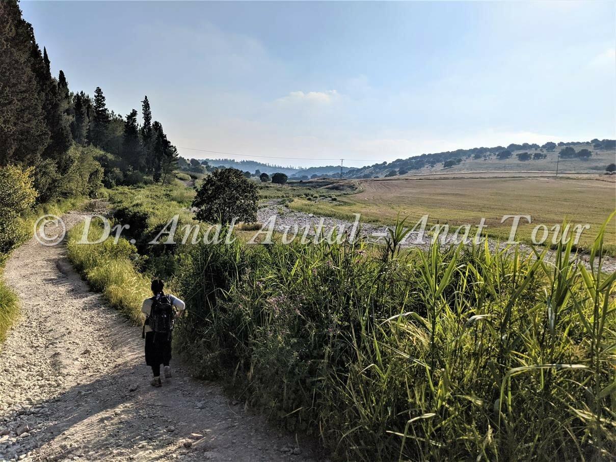 """מאגר פירחה-רז-גלעד, רמות מנשה, צילום: ד""""ר ענת אביטל"""