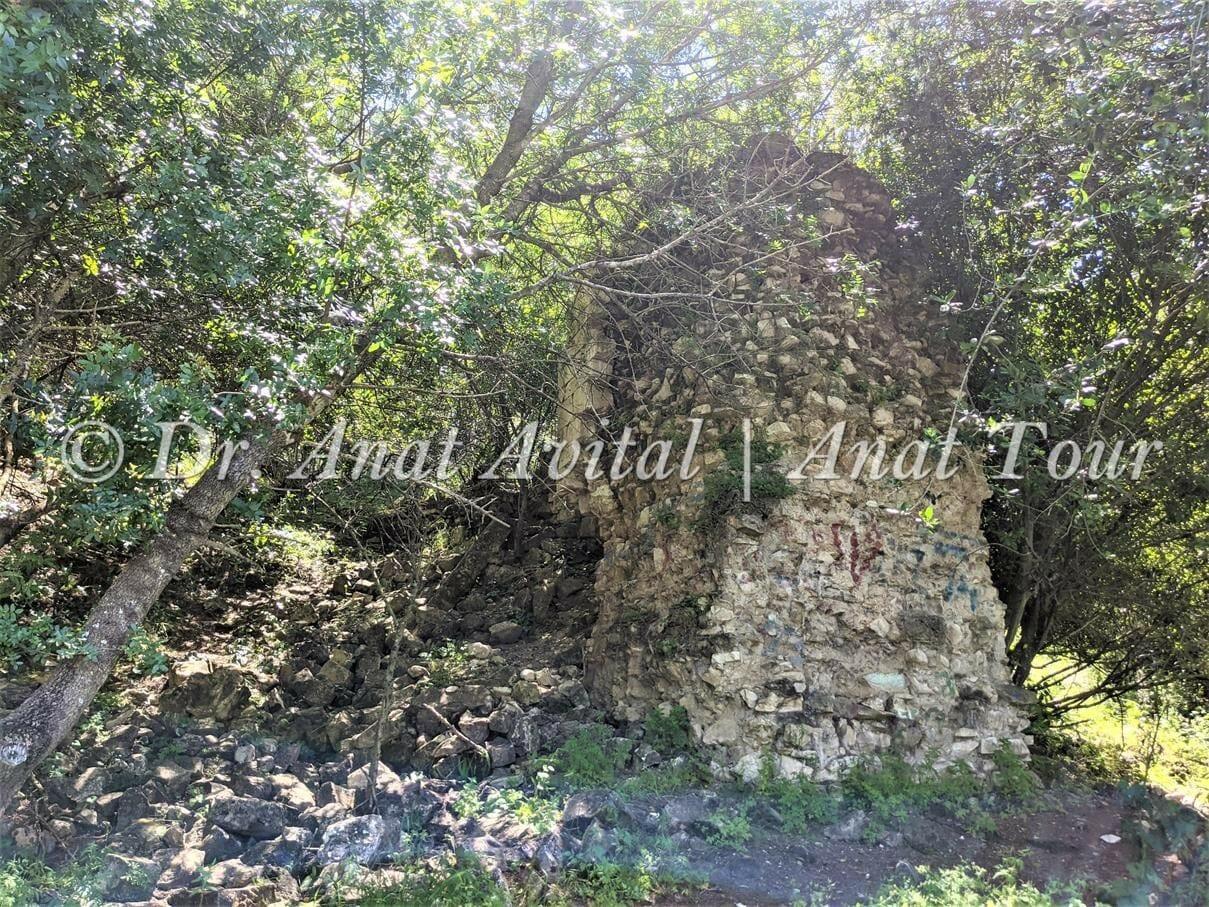 """טחנת הקמח בנחל שלף, רמות מנשה, צילום: ד""""ר ענת אביטל"""