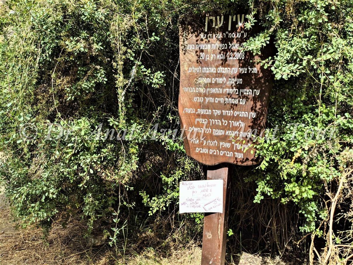 """עין ערן דן גור ז""""ל, עין אשקף: טיול מים קצר בהרי ירושלים, צילום: ד""""ר ענת אביטל"""