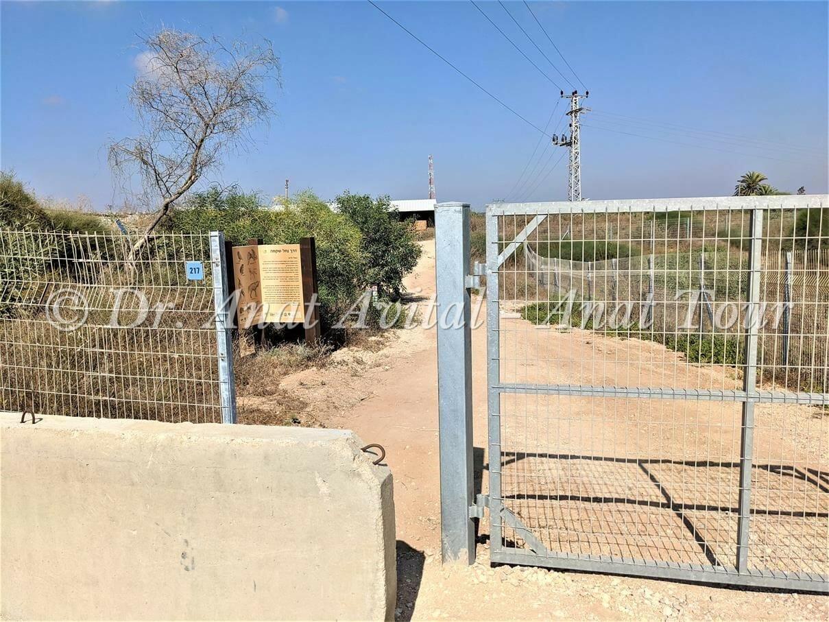 """מסלול טיול ליד בית המשאבות על מאגר נחל שקמה, ליד זיקים, צילום: ד""""ר ענת אביטל"""