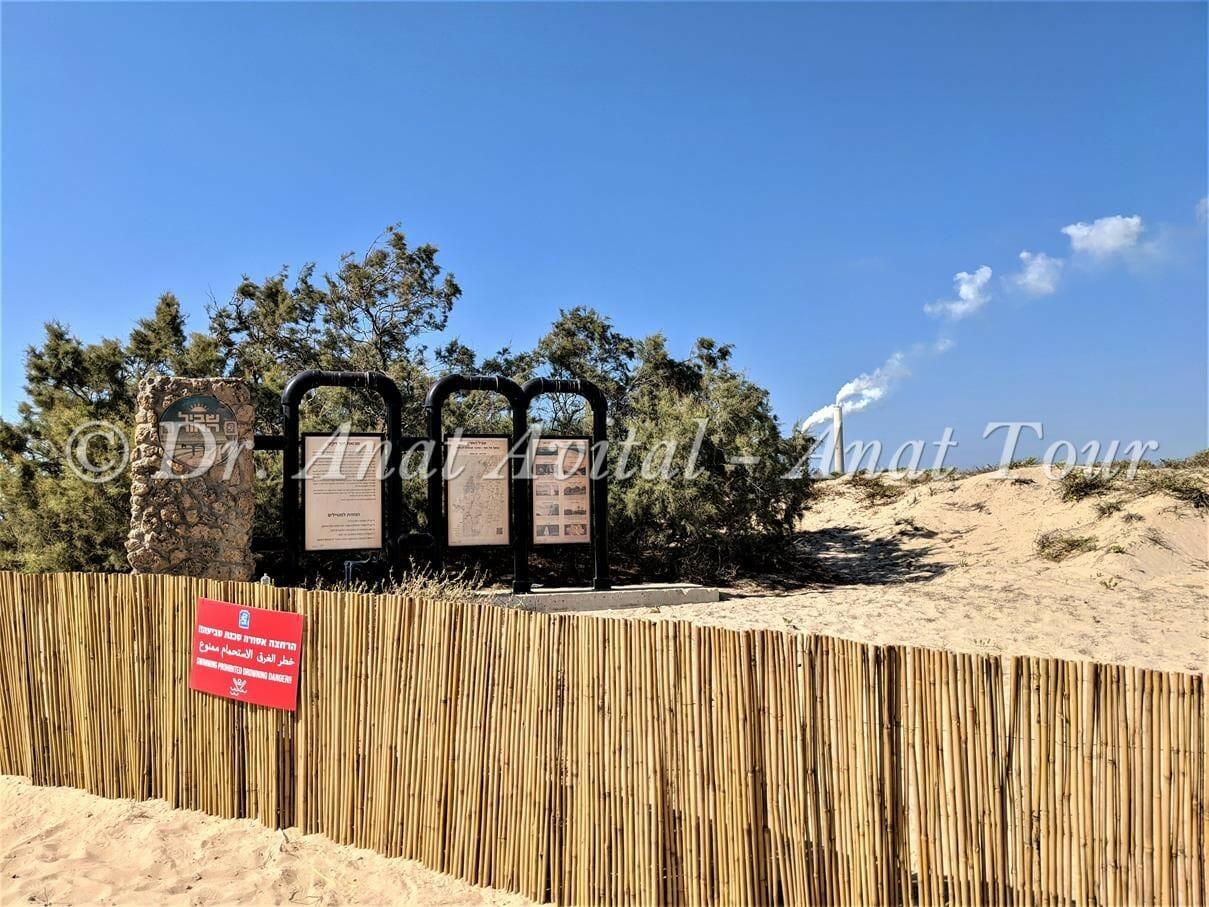 """נחל שקמה בחוף זיקים, צילום: ד""""ר ענת אביטל"""
