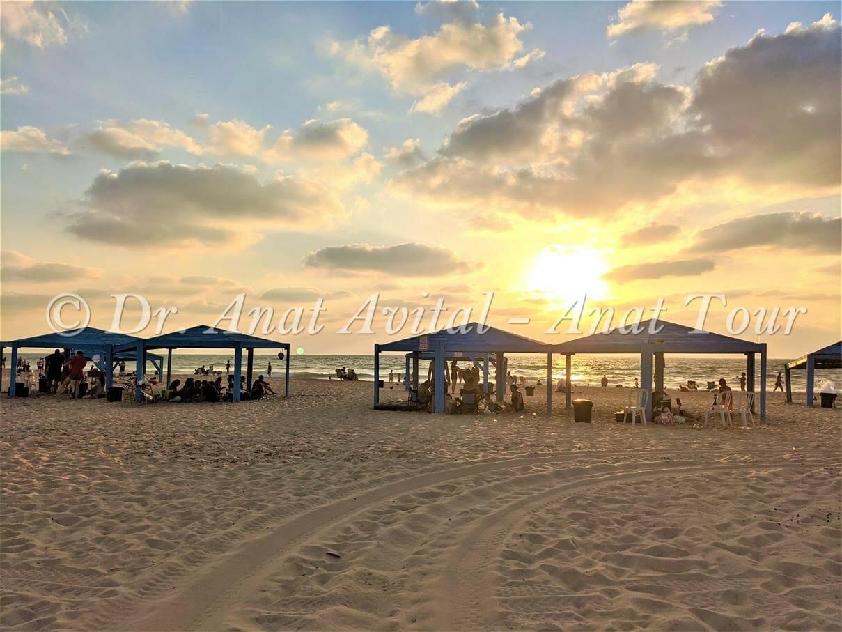 """חוף זיקים, צילום: ד""""ר ענת אביטל"""