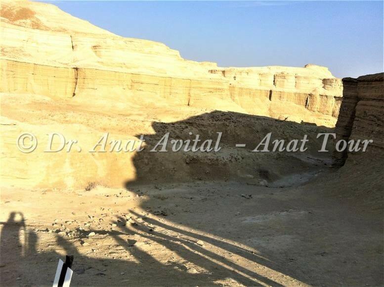 """נחל חווארי מצדה במדבר יהודה, צילום: ד""""ר ענת אביטל"""